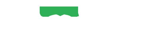 logo-vivitek